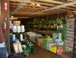 crestview-nurseries-nc-i-155